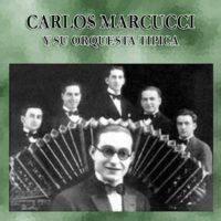 carlos marcucci